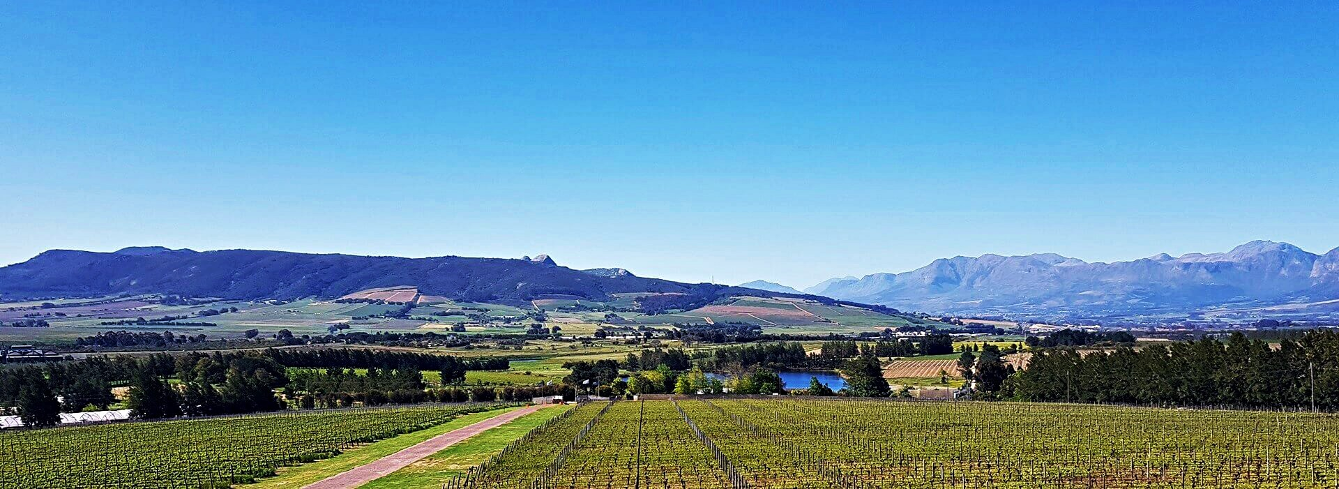 the-wine-specialist-2-and-3-day-wine-tour-15
