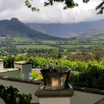 private wine tour - the wine specialists - cape winelands south africa
